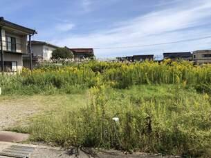 富山市羽根 土地 ※左区画の外観写真